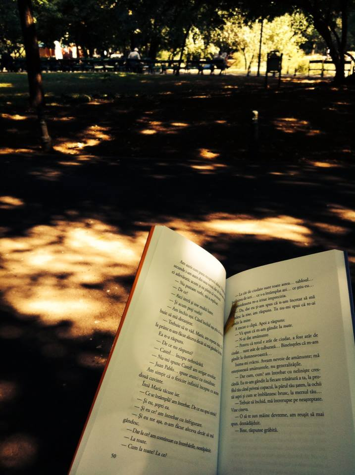 preludiu la 'de ce să citești'