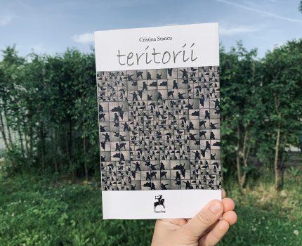 teritorii, Cristina Stancu